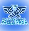 Buon compleanno Città di Falconara, con due regali da scartare: la nascita del settore giovanile maschile e femminile più #wearecitizens